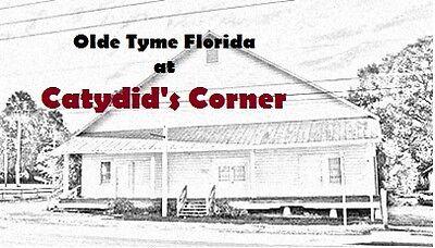 Catydid's Corner