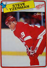 Detroit Red Wings Not Authenticated Sports Trading Lots