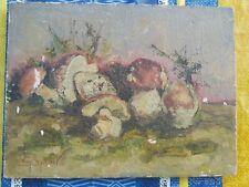 Dipinto olio quadro natura morta funghi micologia firmato