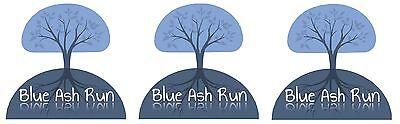 Blue Ash Run