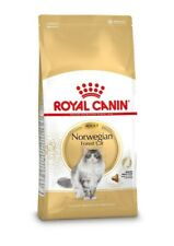 Norvegese delle foreste NORWEGIAN FOREST CAT Royal canin 10 kg