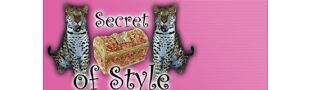 SECRET.OF.STYLE