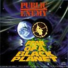 Public Enemy - Fear of a Black Planet (Parental Advisory, 1995)