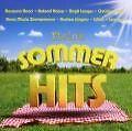 Meine Sommerhits von Various Artists (2010)