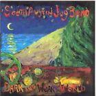 South Austin Jug Band - Dark and Weary World (2006)