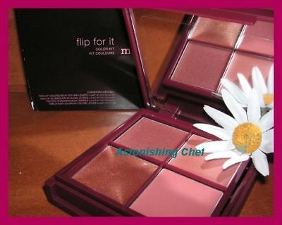 Avon Mark Flip For It Sydney Fall Color Kit
