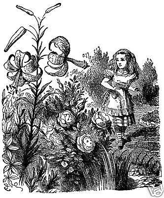 Alice-in-Wonderland-6-x-4-Greetings-Card-John-Tenniel