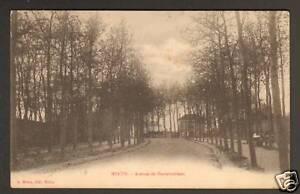 MELUN-77-AVENUE-DE-FONTAINEBLEAU-animee-avant-1904
