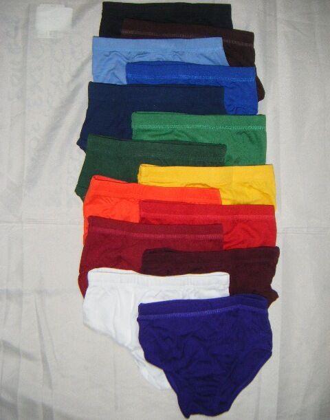 00109 One (1) Cheerleading Uniform Briefs Bloomers Spankies, Ladies Adult