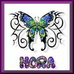 norasnotions7