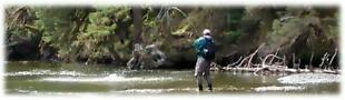 ALL THINGS FLY-Fly Fishing