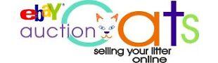 AuctionCats