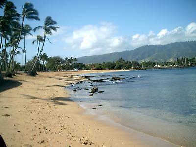 hawaiiseaglassjewelry