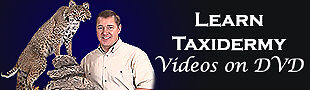 Learn Taxidermy Videos on DVD
