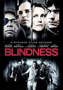 Blindness (DVD, 2009) -  Ex Library - **DISC ONLY**