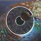 Pink Floyd Album Live Recording Music CDs