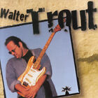 Walter Trout [Reissue] by Walter Trout (CD, Jan-1998, Ruf Records)