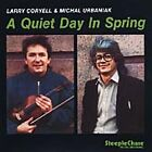 Larry Coryell - Quiet Day in Spring (1988)