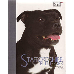 Staffordshire Bull Terrier Best of Breed Dog Book