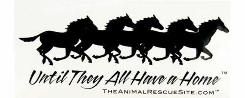 until They All Have A Home Horse Window Cling