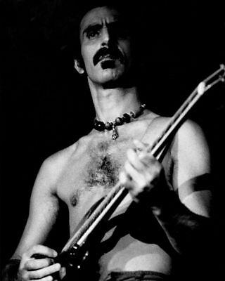FRANK ZAPPA PHOTOGRAPH 1977 Louisville Gardens Concert