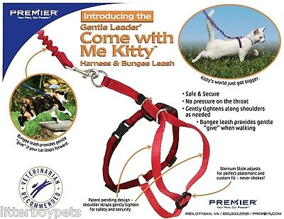 Come With Me Kitty Cat Harness With Leash - Choose Size / Color