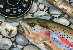 TROPHY-RAINBOW-Trout-Fly-Fishing-ACEO-Miniature-Art-Print-Signed-by-Artist-DJR