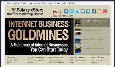 Money-making Internet Marketing Wordpress Ebook Store - Free Shipping
