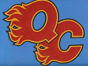 Quad-City-Flames-NHL-AHL-Hockey-Jersey-Patch-E