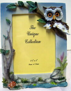 New-Owl-3-5x5-Photo-Frame-Owls-Mushrooms