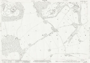 Ansty-south-1925-Wiltshire-old-OS-map-69-7