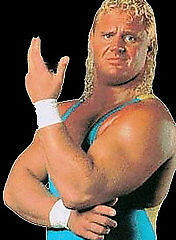 WWE-The-Life-and-Times-of-Mr-Perfect-DVD-Wrestling-Curt-Hennig-Hulk-Bret-Hart