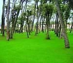 garrdenpark