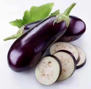 EGGPLANT 'Black Beauty' 30 seeds high yeild SPRING AND SUMMER vegetable garden