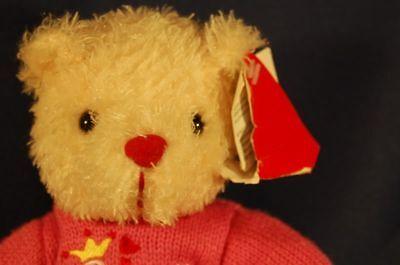 White Bear Princess Sweater Lovey Dandee 8 Stuffed Animal Lovey Toy