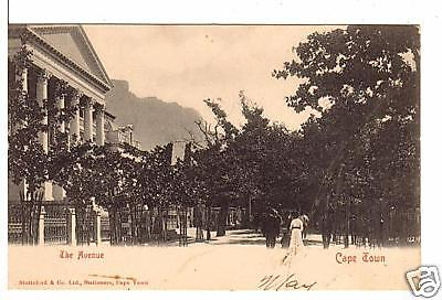 South Africa postcard Cape Town, The Avenue UDB unused