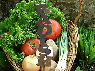 Radish Metal Vegetable Garden Stake Marker Label Rusty