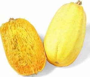 SPAGHETTI SQUASH - 10 seeds - unusual and rare, tasty vegetable garden