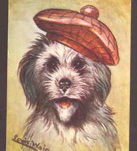 "WAIN...SCOTTIE DOG,""A SCOTCH LADDIE"" WEARS TAM,SCOTCH TERRIER,TUCK,OLD POSTCARD"