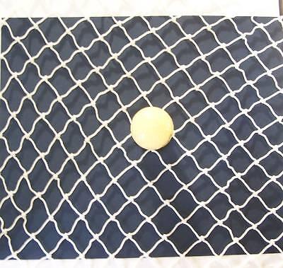 16' X 8' Golf Net Impact Netting Nylon 1 30 Test 300 Lbs Top Rope