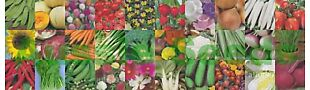 Aussie Seeds