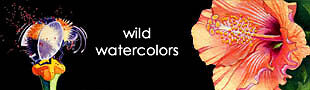 Wild Watercolors