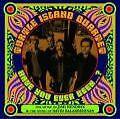Have You Ever Been...? von Turtle Island Quartet (2010)