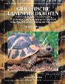 Griechische Landschildkröten von Manfred Rogner