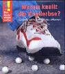 Warum knallt die Knallerbse?, Band 8 (2003, Gebunden)
