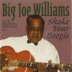 Big Joe Williams - Shake Your Boogie (Live at the Old Capitol Building 1974/Live Recording, 2007)