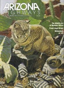 1988-NOVEMBER-ARIZONA-HIGHWAYS-NATIVE-ART-WRIGHT-TALES