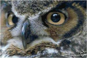 Owl Eyes Counted Cross Stitch Pattern