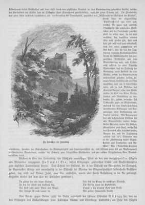Habsburg Kanton Aargau Habsburger HOLZSTICH von 1883