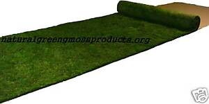 3x20-REAl-SHEET-MOSS-RUNNER-aisle-real-natural-moss-preserved-wedding-display